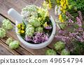 Mortar of medicinal herbs. 49654794