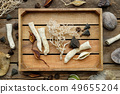 Wooden box, dry roots, nut shell, coconuts, plants 49655204