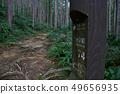 쿠마 노 고도 中辺路의 길 49656935