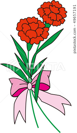 Carnation 49657191