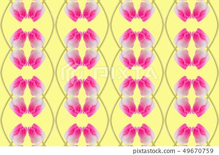 鬱金香樣式,黃色背景 49670759