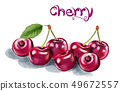 Cherry Vector watercolor. Fresh juicy aromatic 49672557