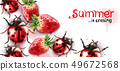 Summer season with strawberry and ladybugs Vector 49672568