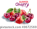 Strawberry and cherry Vector watercolor. Summer 49672569