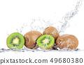 fresh kiwi falling in water 49680380
