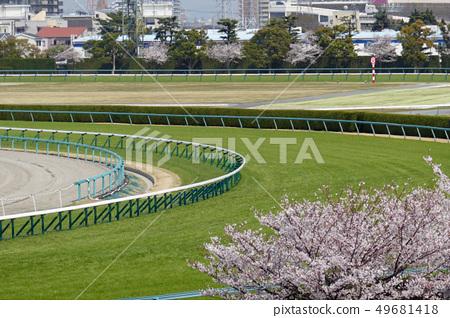 阪神賽馬場 - 櫻花和Shichiuchi球場 49681418