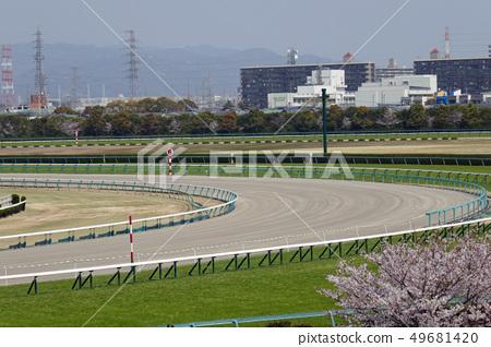 阪神賽馬場 - 櫻花和土路的角落 49681420