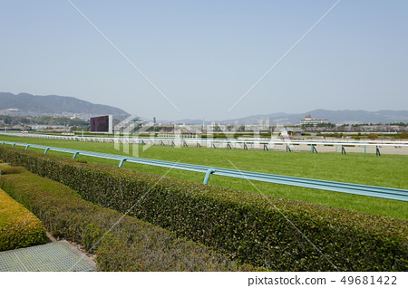 阪神賽馬場 - 柴犬場最後一條直線(1) 49681422