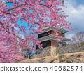 Ueda City, Nagano Prefecture Ueda Castle and Sakura 49682574