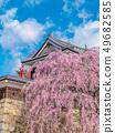 Ueda City, Nagano Prefecture Ueda Castle and Sakura 49682585