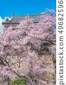 Ueda City, Nagano Prefecture Ueda Castle and Sakura 49682596
