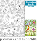 Coloring Book With Birds 49682684