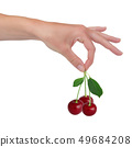 Fruit 49684208