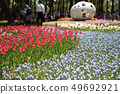 Hitachi Beach Park Tulip 49692921