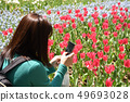 Woman taking a photo Rear view tulip 49693028