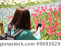Woman taking a photo Rear view tulip 49693029