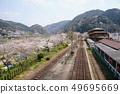 벚꽃의 로컬 선 · 간사이 본선 · 笠置 13 49695669