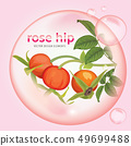 Rose hip oil extract essence with flower and fruit 49699488