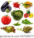 background of fresh vegetables 49708677