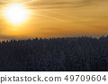 sunlight in a golden sky above forest 49709604