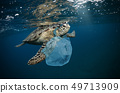 Underwater global problem with plastic rubbish 49713909