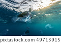 Underwater global problem with plastic rubbish 49713915
