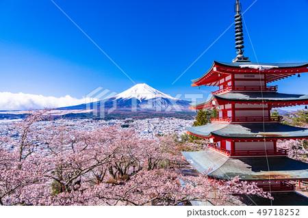 (야마나시 현) 일본의 미 · 벚꽃과 눈 · 니이 쿠라 야마 센겐 공원에서 바라 보는 후지산 49718252