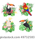 Cute tropical birds set with floral elements. 49732583