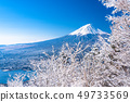 <Yamanashi Prefecture> Japan's winter, Mt. Fuji and hoarfrost 49733569