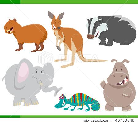 wild animal characters cartoon set 49733649