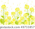 Illustration of a rape field 49733857