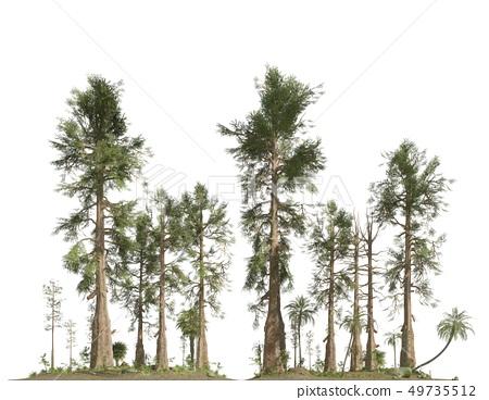 Forest of the mesozoic era isolated on white background 3D illustration 49735512