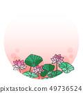 연꽃의 프레임 1 49736524