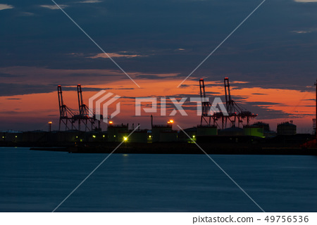 Twilight crane group 49756536