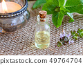 A bottle of tulsi essential oil with fresh tulsi 49764704