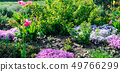 Beautiful flowerbed with the first spring flowers. 49766299