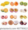 fruit isolated on whited on white background 49778922
