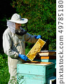 Beekeeper in protective workwear inspecting frame 49785180