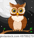 Owl sitting on a branch against the moon and the 49789279