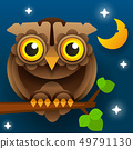 Owl Vector Isolated Icon. Wild Forest Feathered 49791130