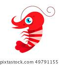 Shrimp. Isolated shrimp on white background. 49791155