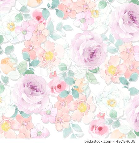 美麗的水彩玫瑰色牡丹花 49794039