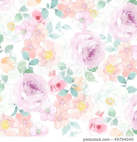 美麗的水彩玫瑰色牡丹花 49794040