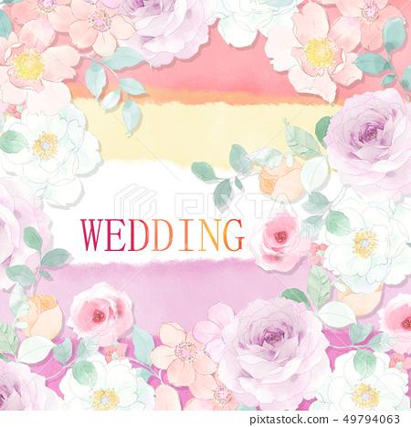 美麗的水彩玫瑰色牡丹花 49794063