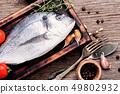 Fresh raw fish 49802932