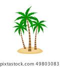 Palm tree Vector Set 49803083