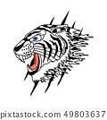 White Tiger Design 49803637