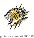Tiger Vector Design 49803639