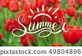Field of red tulips. Blurred background, soft 49804896