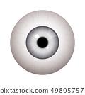 Realistic human eyeball 49805757